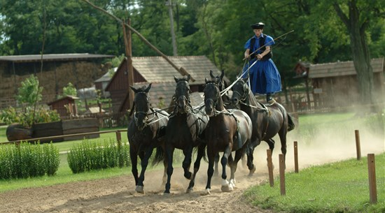 Horses & Equestrianism - Hungary - Baltic Holidays