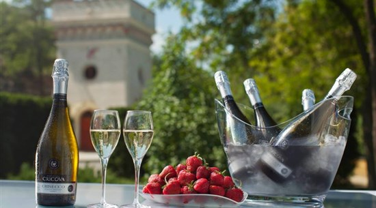 Wine Festival in Moldova Group Tour - Baltic Holidays