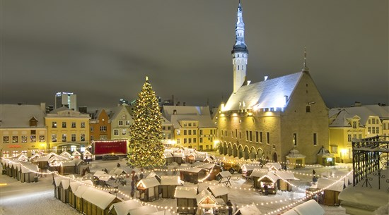 Baltic Christmas Markets Private Tour - Baltic Holidays